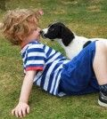 a child is enjoying playing with a dog