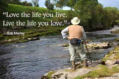 Do You Love the Life You Live