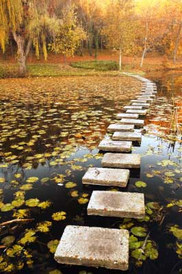 A path of life with stepping stones