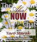 Interview with Yaro Starak about making money blogging