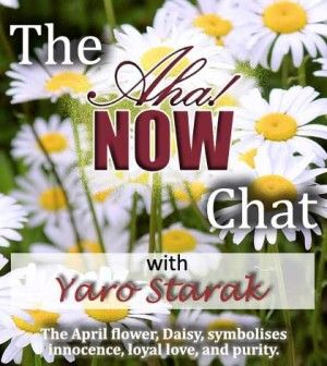 Interview with Yaro Starak about making money blogging