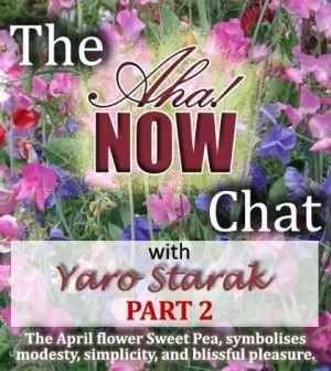 Interview with Yaro Starak Part 2