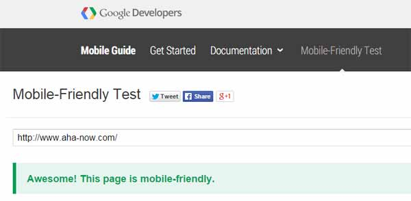A mobile-friendly test of Aha!NOW on Google