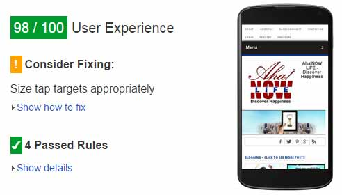 Google page speed screenshot of Aha!NOW mobile user experience
