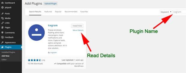 Installation WordPress window for Icegram plugin
