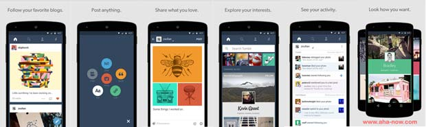Screenshots of Tumblr Android App