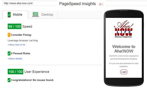 Google PageSpeed Mobile-Friendly Test for Aha!NOW Blog