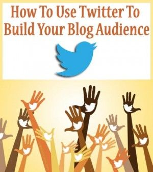 Tweeple shown as blog audience with Twitter logo