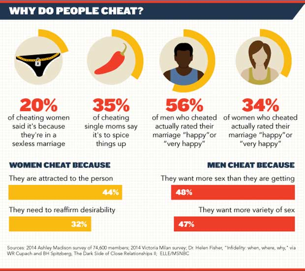 Infographic showing why spouse cheat on each other