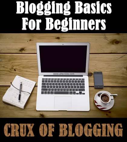 Blogging Basics: CRUX of Blogging Tips for New Bloggers