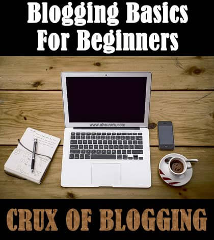 Blogging Basics: CRUX of Blogging Tips for New Bloggers