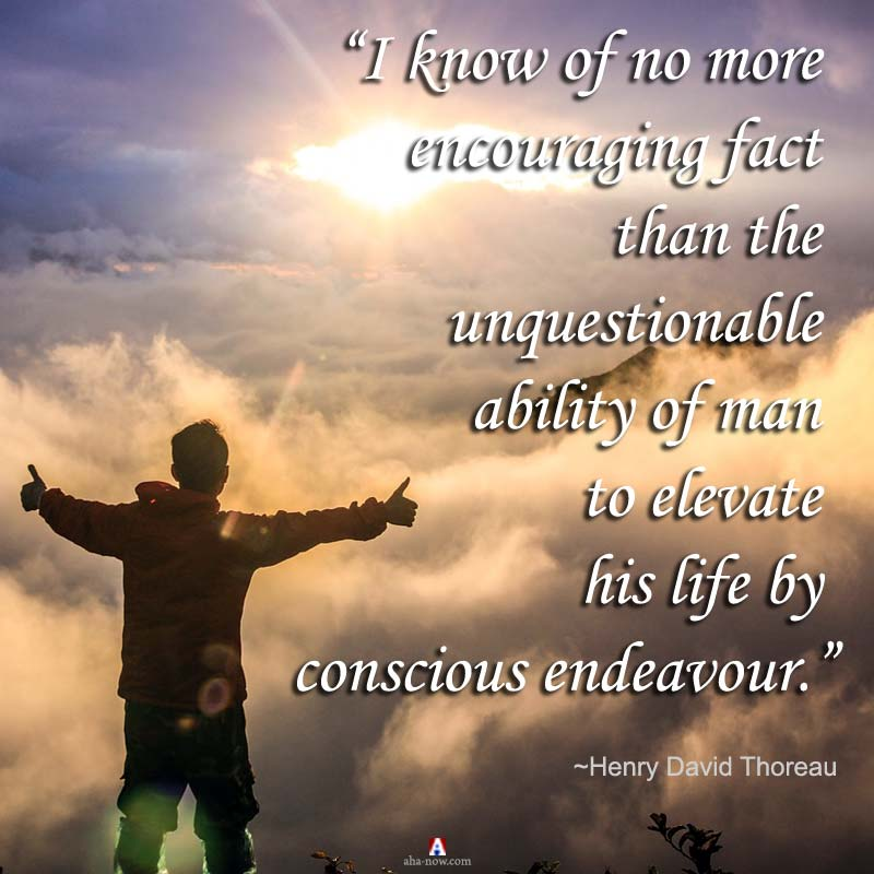 I know of no more encouraging fact than the unquestionable ability of man to elevate his life by conscious endeavor