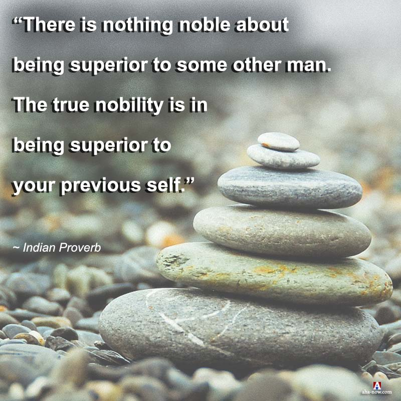 The true nobility is in being superior to your previous self.