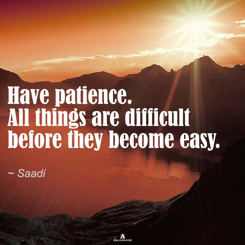 """""""Have patience. All things are difficult before they become easy."""" ~ Saadi"""