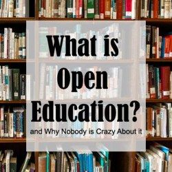 What is Open Education and Why Nobody is Crazy About it