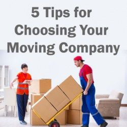 5 Things to Look for in a Mover