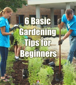 Family learning gardening tips in garden