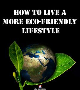 How to Live a More Eco-Friendly Lifestyle | Aha!NOW