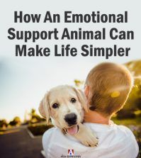A boy with a dog as an emotional support animal
