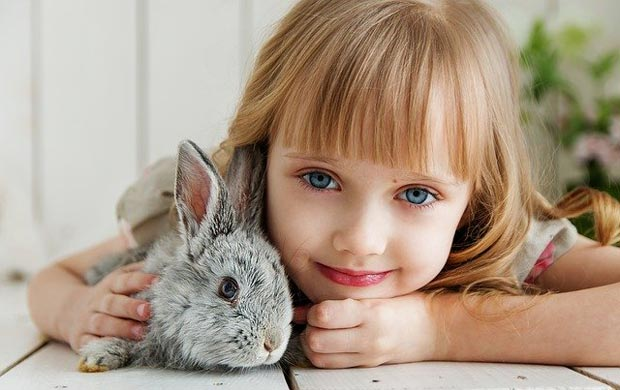 Pet rabbit with its pet parent